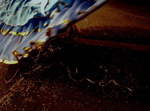 carna-2008-d-foto-alberto-viana