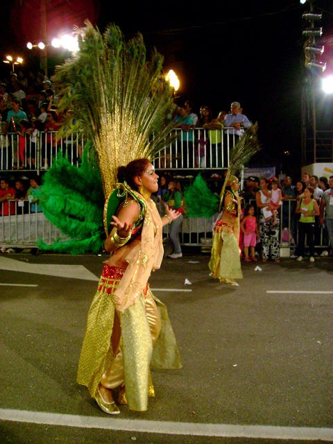 carnaval-de-curitiba-2009-127-copia
