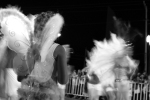 internet-edit-carnaval-curitiba-2008457